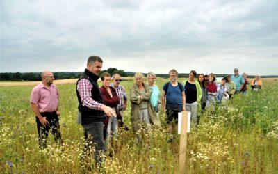Länderübergreifendes Blühwiesen-Projekt: GEMEINSAM GELINGT GUTES